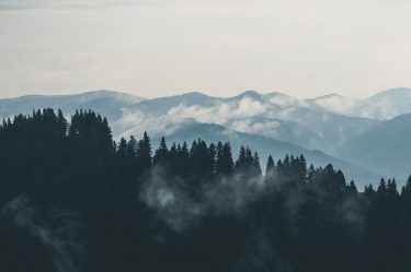 mountains clouds forest fog